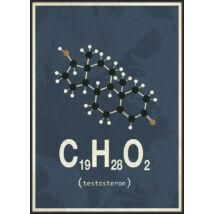 Kép Molekula-Tesztoszteron