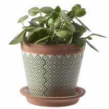 Cesara virágcserép, zöld/fehér