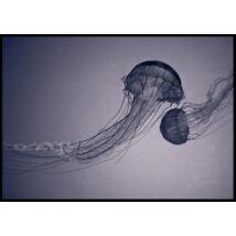 Jellyfish vászonkép, fekete kerettel, 130x195 cm