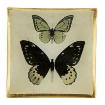 Butterfly dekorációs tál, multicolor/arany