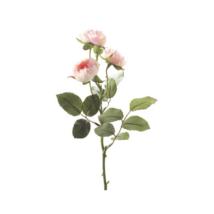 Művirág Lotte, Rózsaszín