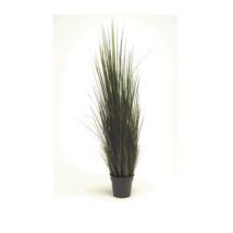 Művirág Folyóparti fű
