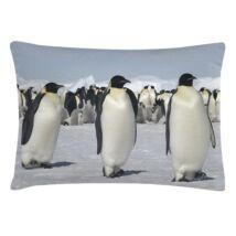 Pingvines díszpárna, világosszürke