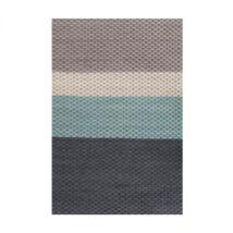 Regard szőnyeg Grey, 170x240cm