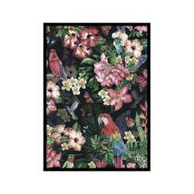 Jungle kép, Fekete 50x70 cm