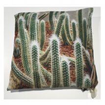 Kaktusz 2. díszpárna