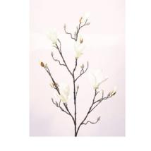 Művirág Magnólia, krém
