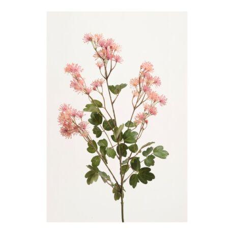 Művirág vadvirág, Rózsaszín