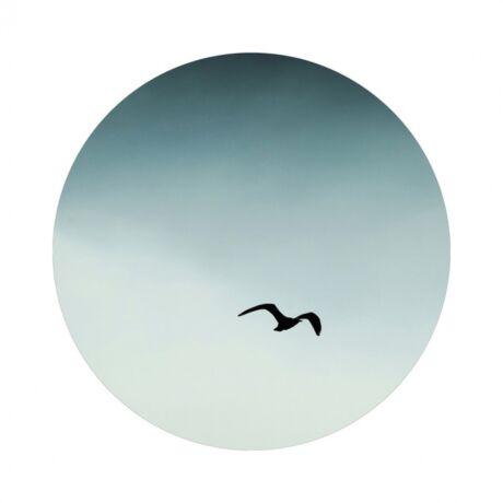 Seagull blue kép,  D70 cm