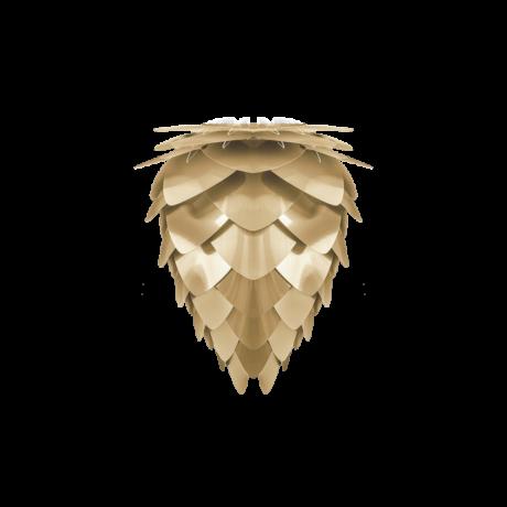 Conia lámpabúra, Sárgaréz