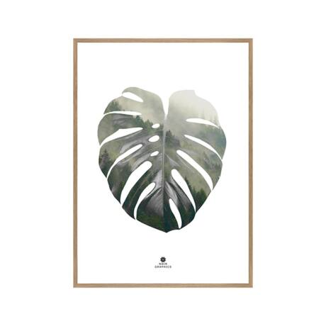 Monstera leaf kép, 50x70cm