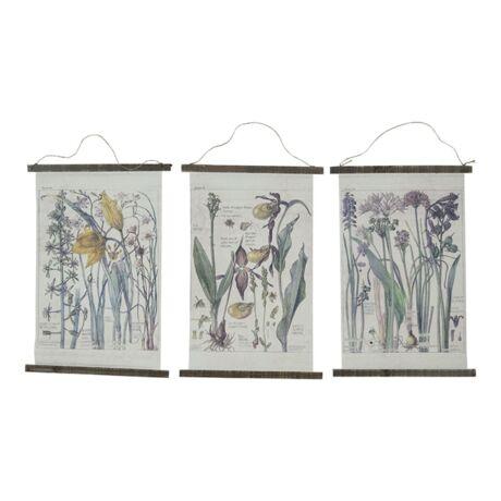 Növények 3-as szett kép,  50x75 cm