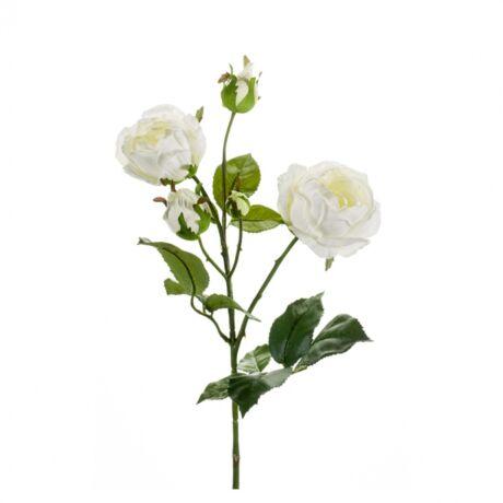 Művirág Rózsa, krém