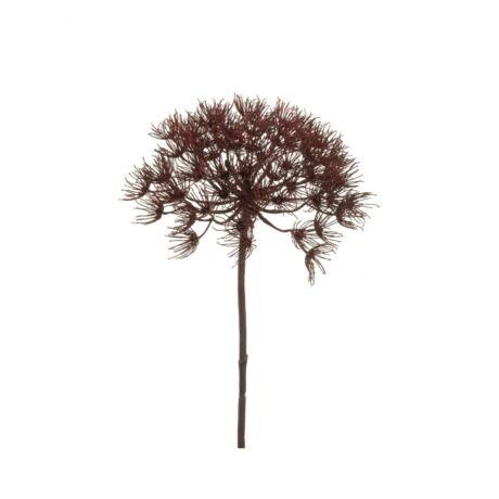 Művirág Medvetalp, burgundy