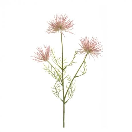 Művirág Szellőrózsa, pink