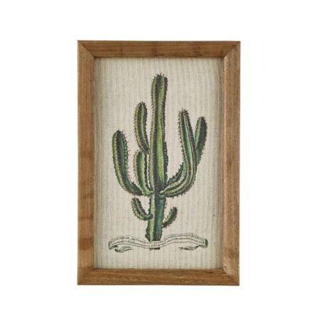 Cactus I. kép,  20x30 cm