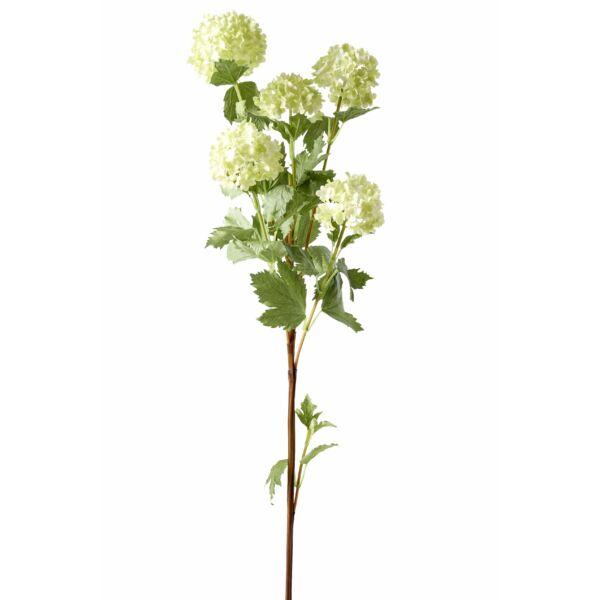 Labdarózsa, világoszöld, 90cm