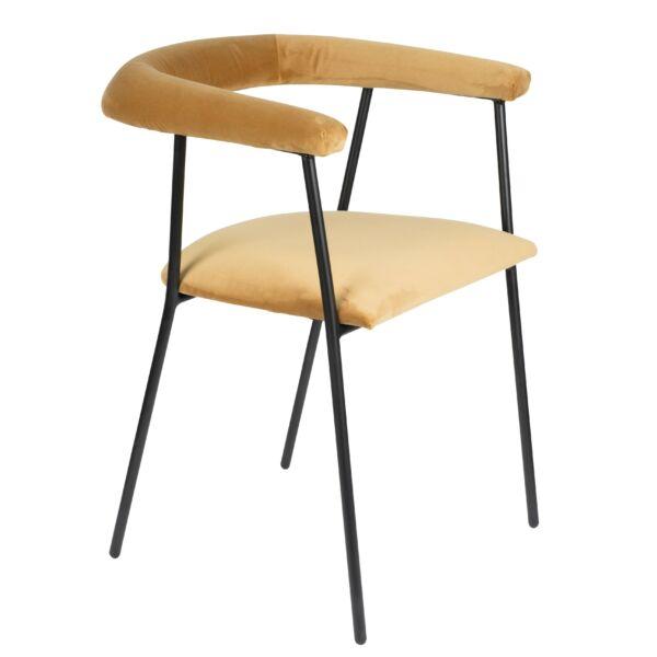 Haily szék, arany