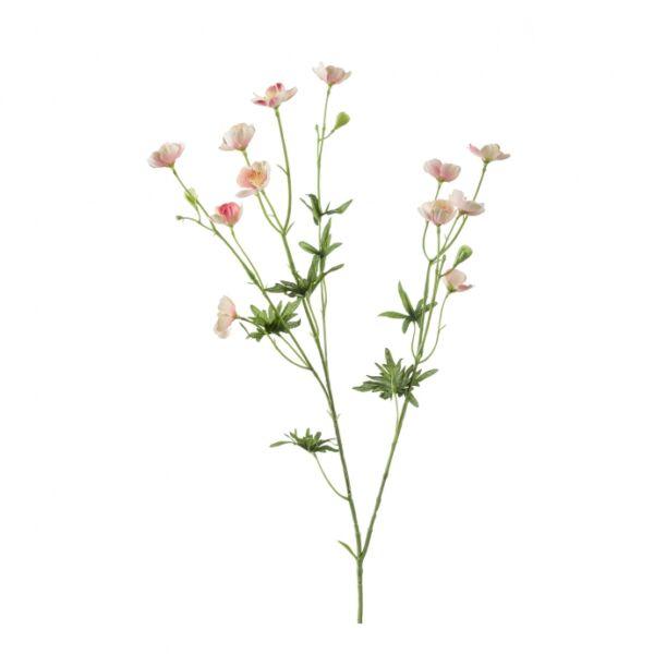 Művirág Boglárka, Rózsaszín