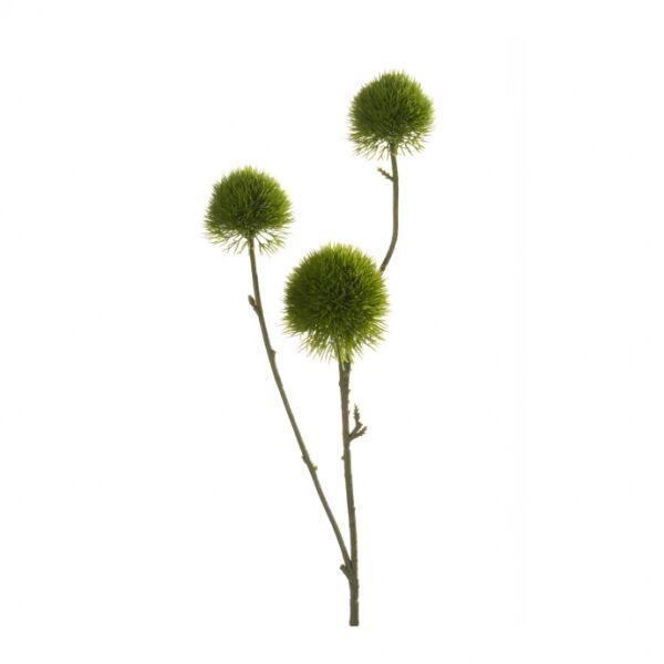 Művirág Zöld szegfű, zöld