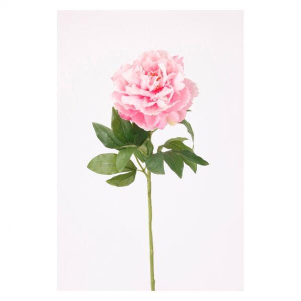 Művirág Pünkösdi rózsa, pink