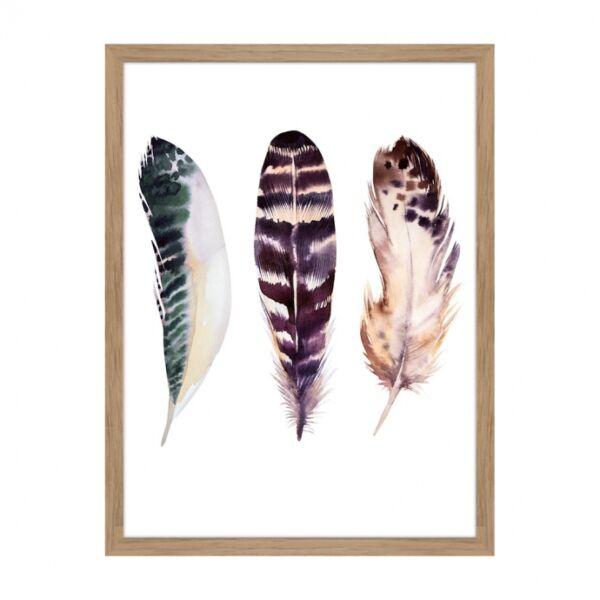 Feathers 1. kép,  30x40 cm