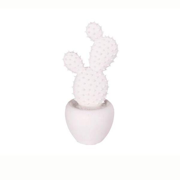 Fikon dekorációs kaktusz, fehér porcelán